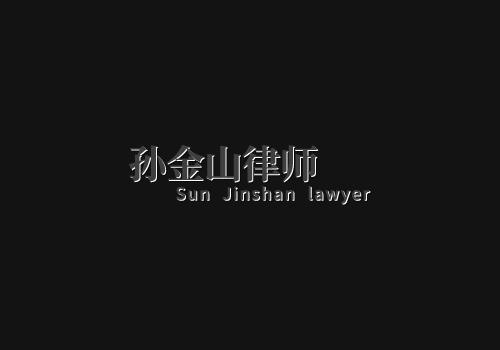 上海孙金山刑事律师:整站外包案例